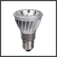 LED PAR20 Lamps
