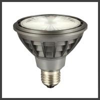 LED PAR30 Lamps