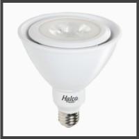 LED PAR38 Lamps