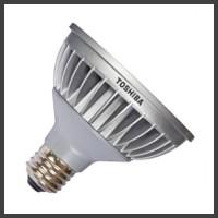 PAR30 LED Lamps