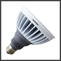 PAR38 LED Lamps
