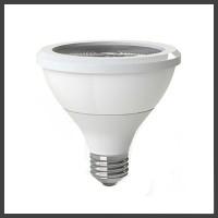 2700K PAR30 Lamps
